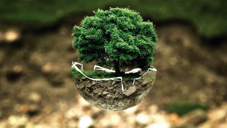 Астрахань стала тринадцатой в экологическом рейтинге