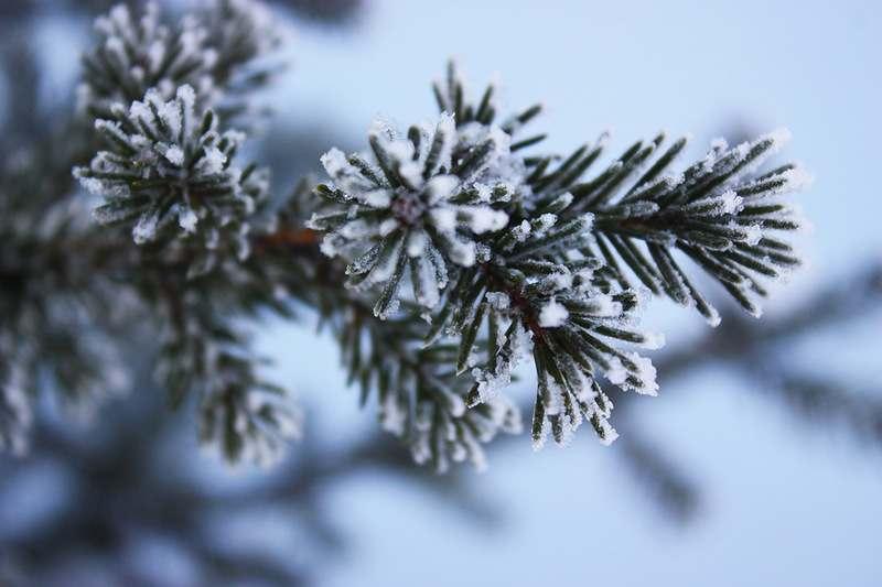 В Астрахани резко похолодало