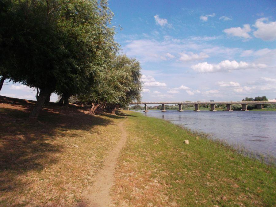 Берега Астраханской области — одни из самых чистых в стране