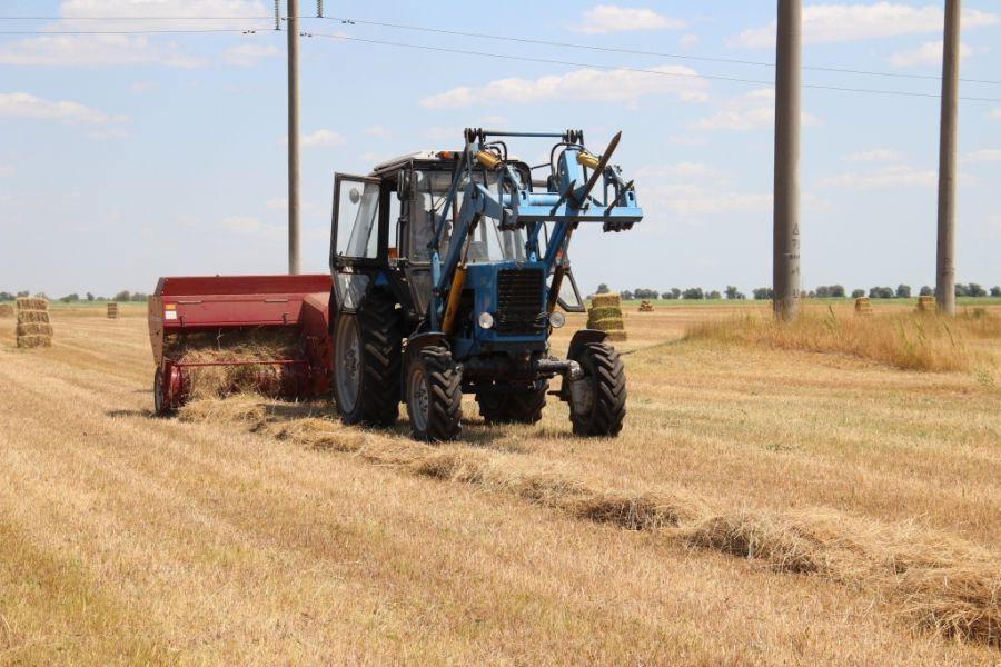 До астраханских фермеров не доводят средства господдержки