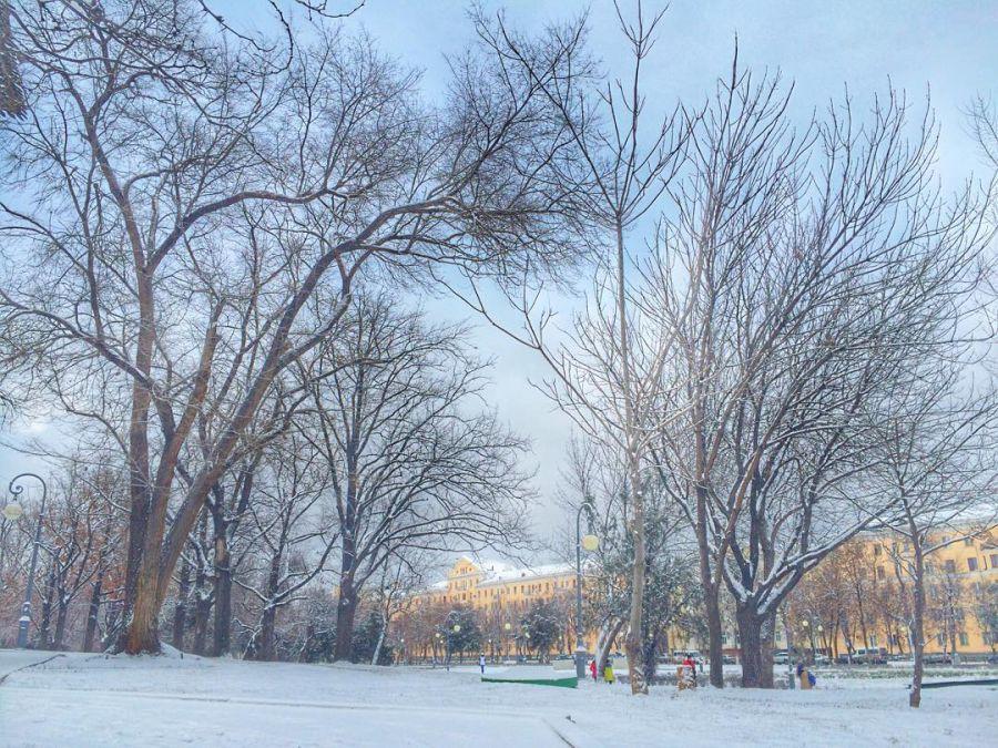 В Астрахани выпал первый снег