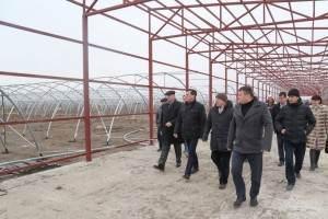 Александр Жилкин ждет томатную пасту