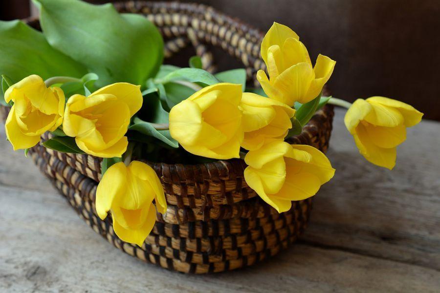 В честь Восьмого марта астраханцы будут отдыхать четыре дня подряд