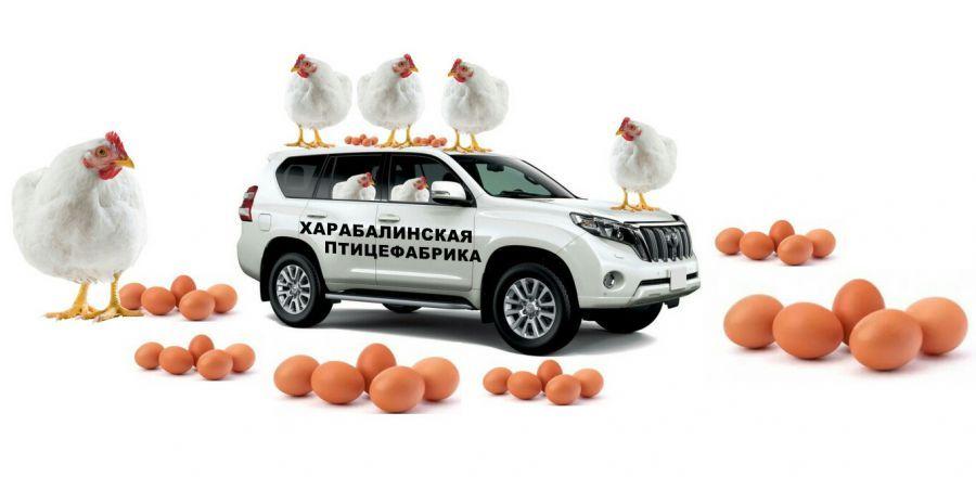Птицефабрика «Харабалинская» купит автомобиль за 5 млн рублей