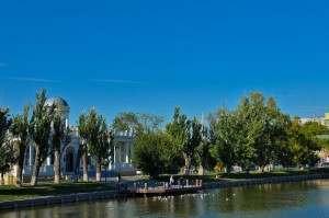 Главу Астрахани попросили построить домик для лебедей