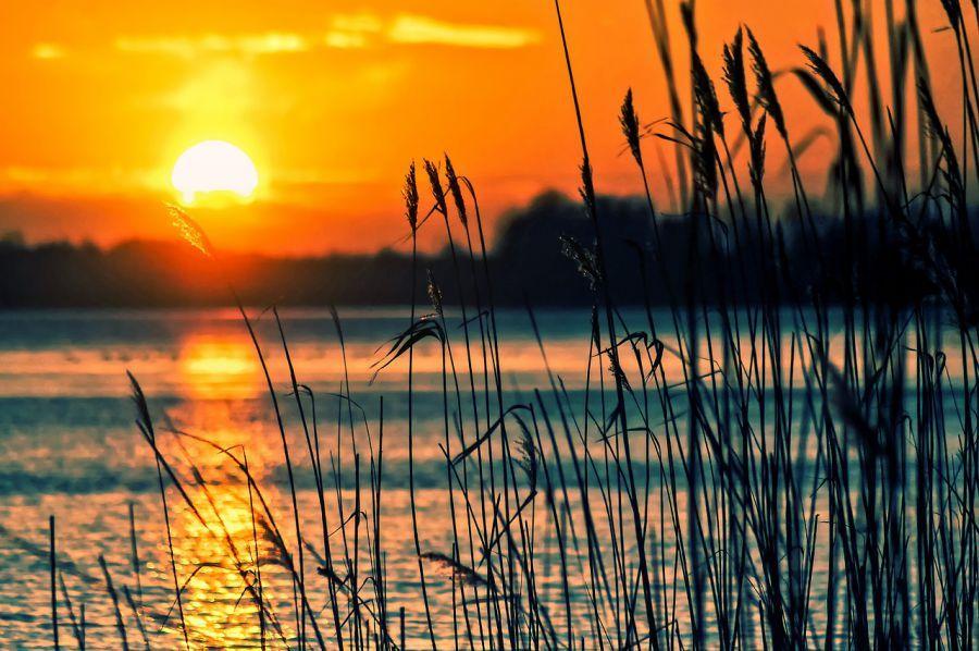 Воскресное чтение: астраханский рассказ о любви и рыбалке