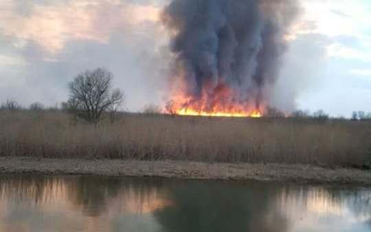 Два сотрудника Астраханского заповедника 7 часов боролись с огнем на границе заказника