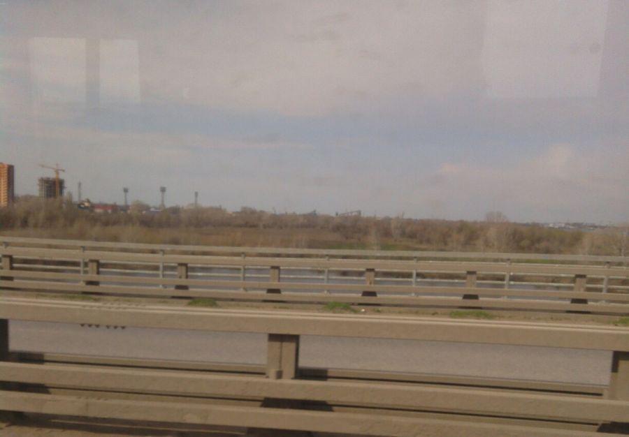 На астраханском мосту начал всходить рис