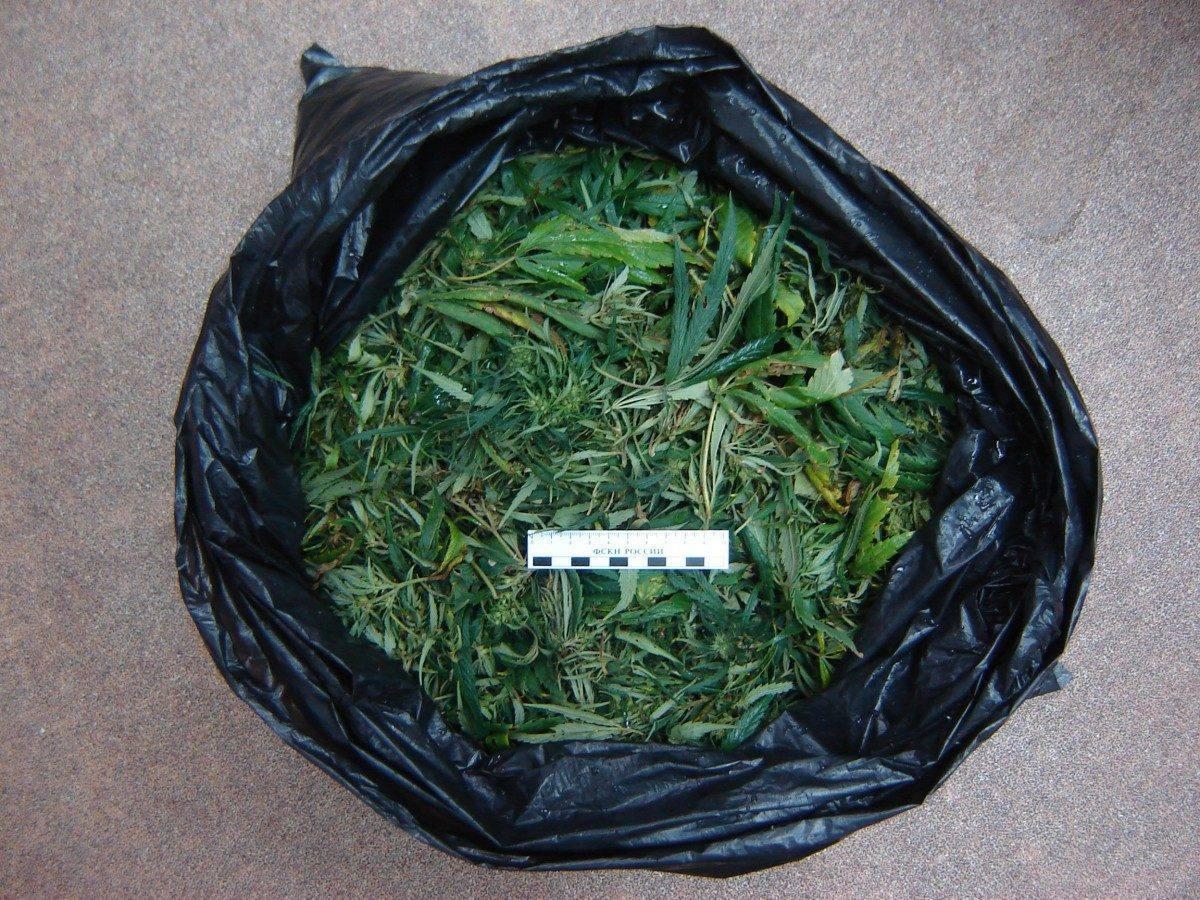 Полиция поймала астраханца с коноплей в прозрачном пакете