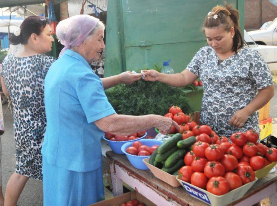На всю Астрахань будет 25 «зеленых рядов»
