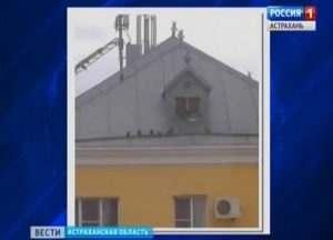Астраханское министерство образования оставило голубей без жилья