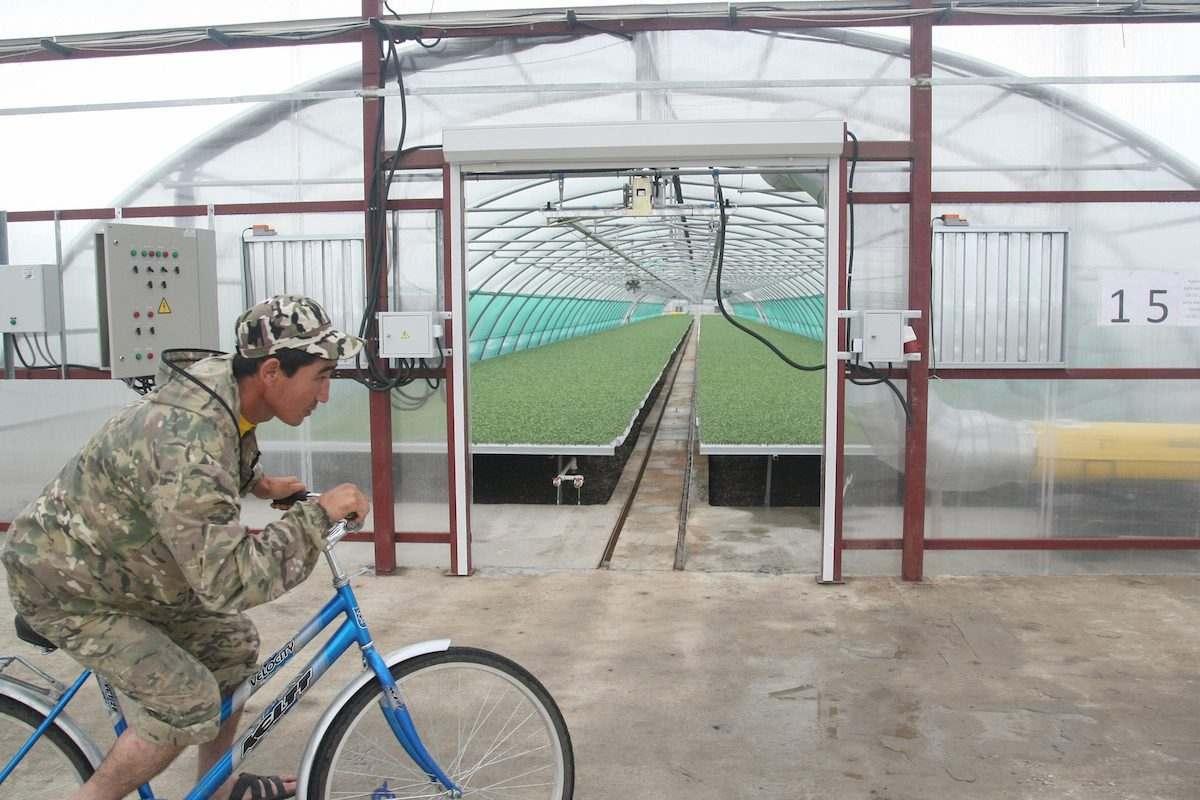 Астраханцам предлагают работу на будущем заводе томатной пасты