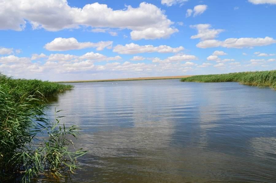 Уровень воды в Астраханской области становится опасным