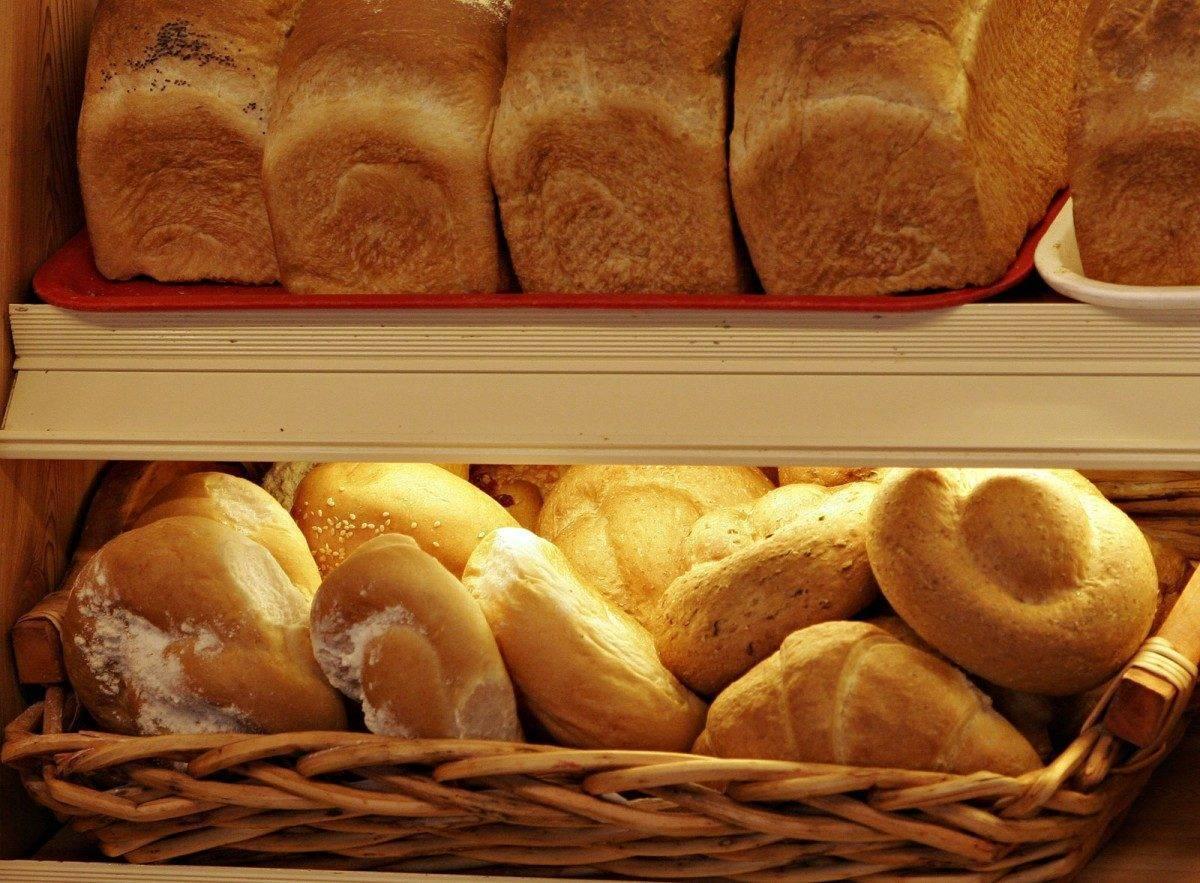 В астраханской пекарне нашли пыль, грязь, жир и кошку