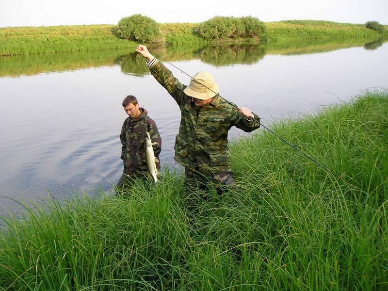 Астраханские турбазы снова хотят проверить на легальность