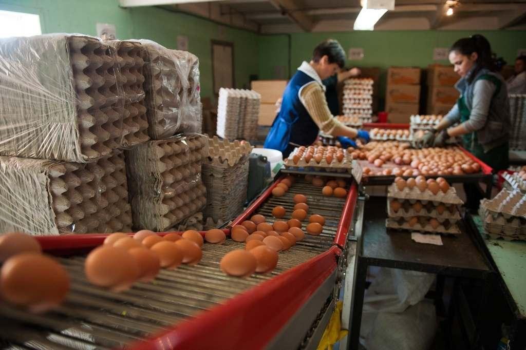 В Астрахани дешевеют яйца