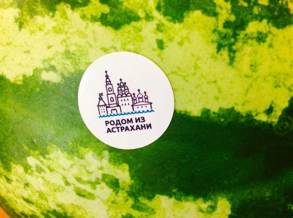 Астраханцев приглашают на дегустацию брендированных арбузов