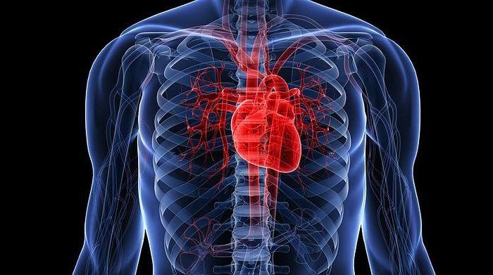 Чаще всего астраханцы умирают от болезней системы кровообращения