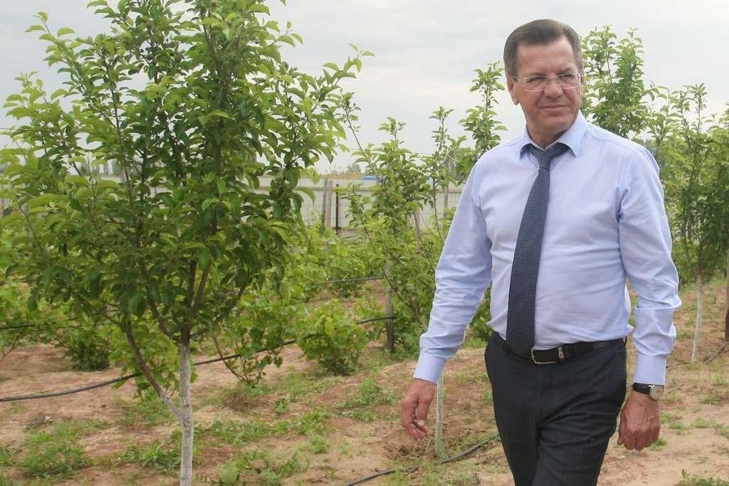 Александр Жилкин рассказал о «золотом времени» для иранских сельхозпроизводителей
