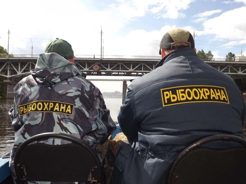Астраханские инспекторы по рыболовству пытались получить взятку с колхоза