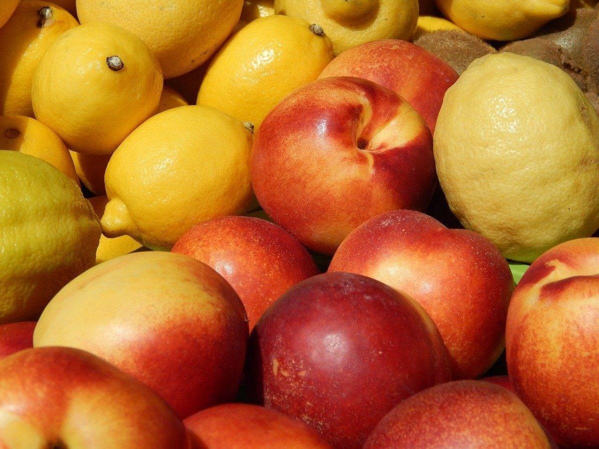 Астраханские специалисты не дали провезти зараженные фрукты в Крым