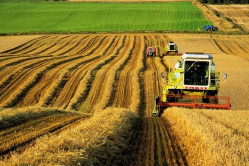 В Астраханской области строится крупный агропромышленный комплекс