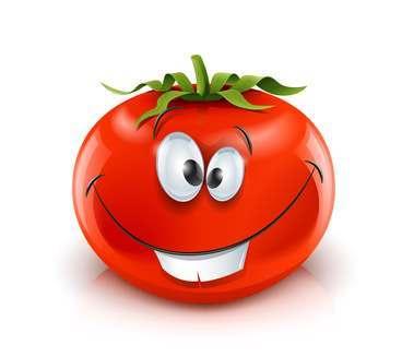 Астраханский завод томатной пасты так и не запустили в срок