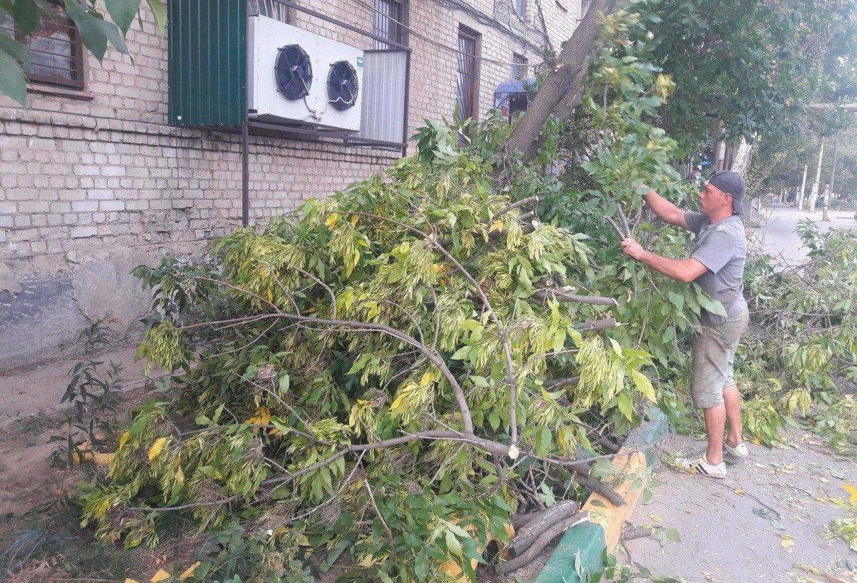 Сотрудники городских коммунальных служб сломали цветы в астраханском дворе