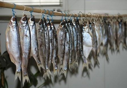 Ограбление по-астрахански: у сельчанина украли вяленую рыбу