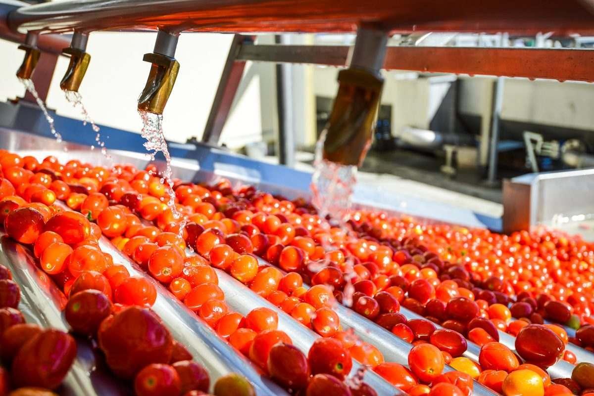 «Юнилевер», «Пепсико» и «Хайнц» могут стать покупателями астраханской томат-пасты
