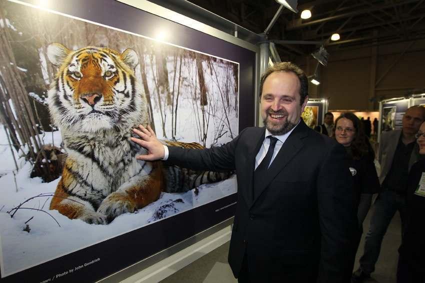Астраханцы не смогут продавать тигров через интернет