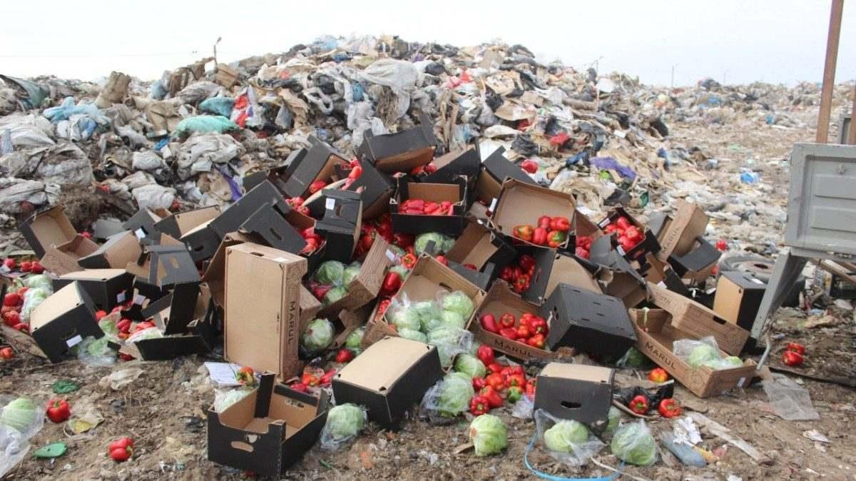Очередную партию овощей и фруктов уничтожили на полигоне ТБО