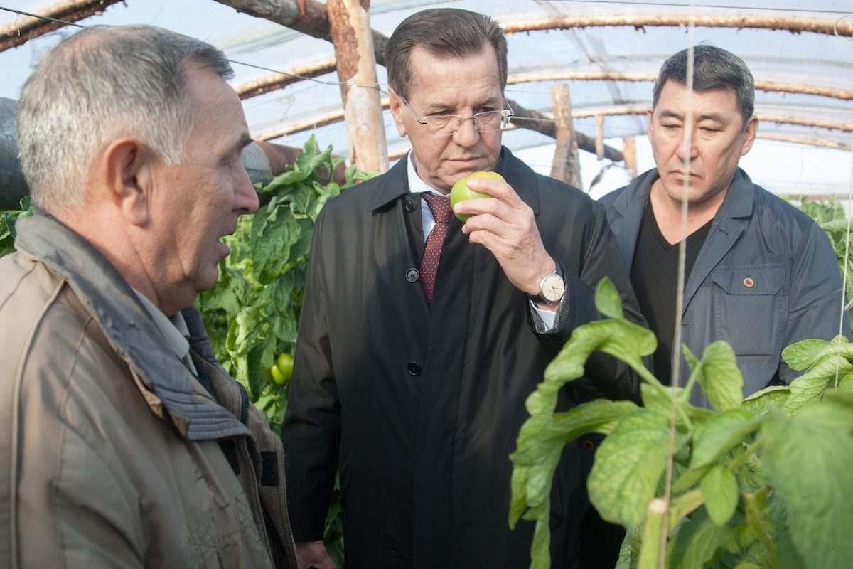 Александр Жилкин посмотрел на редьку и капусту
