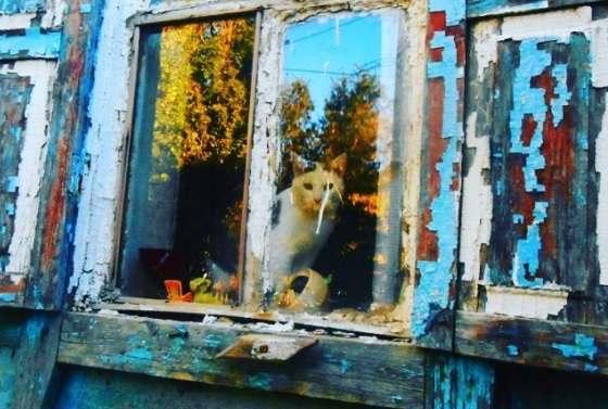 От реализации ряда программ в Астраханской области откажутся