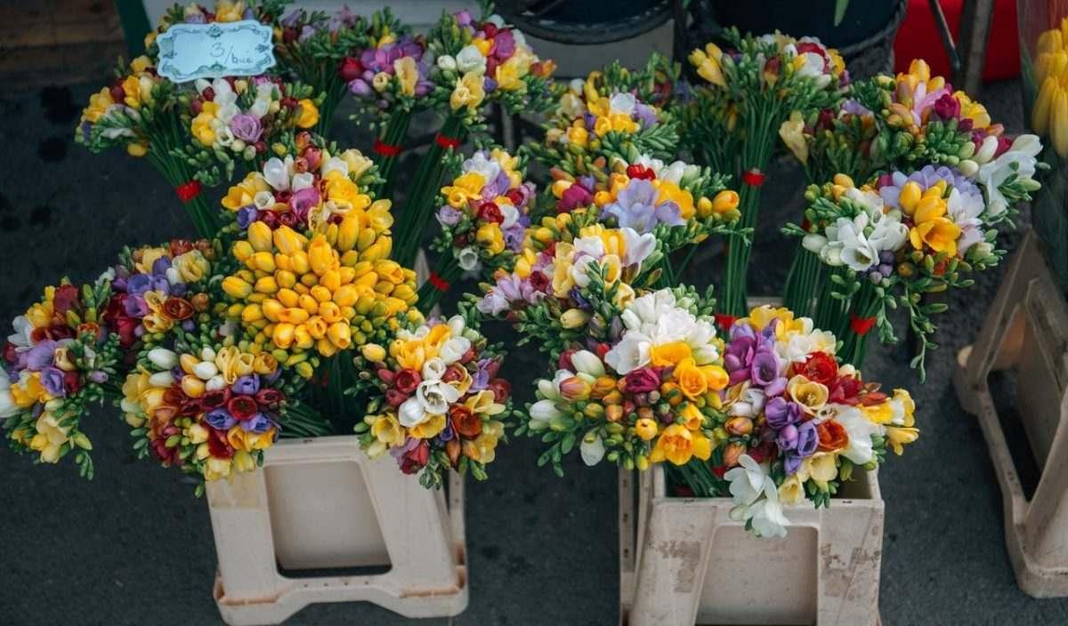 В субботу откроется 28 торговых мест с цветами