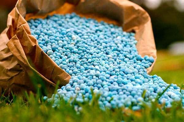 Удобрений хватит всем астраханским фермерам