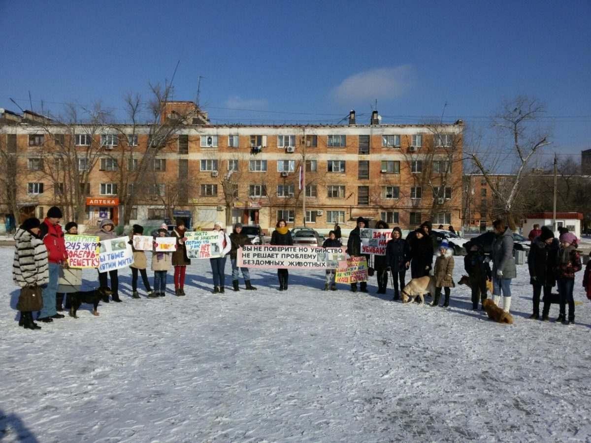 В Астрахани неохотно поддержали митинг в защиту животных