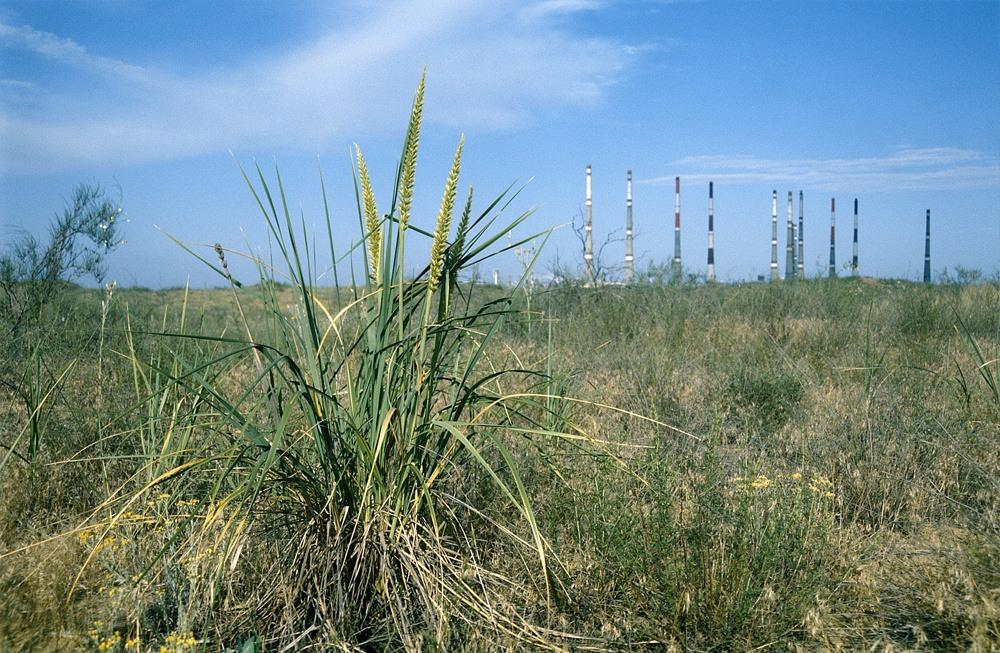 Астраханская область ухудшила экологические показатели