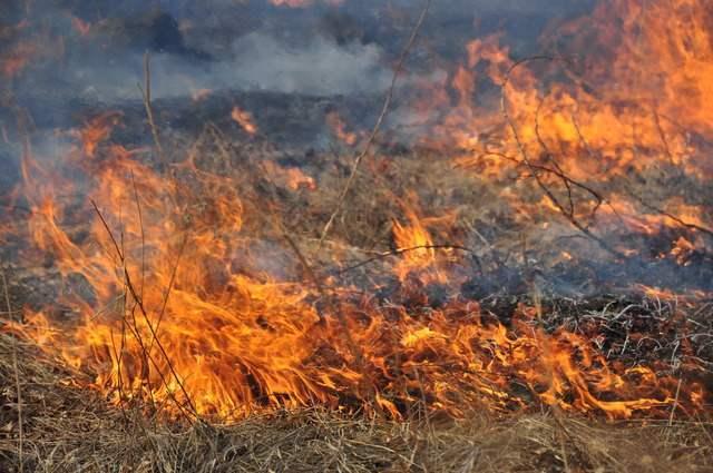Пожароопасный сезон в Астраханской области начнется 1 марта