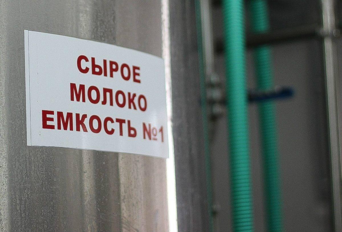 Цены на сырое молоко в Астраханской области — одни из самых высоких в стране