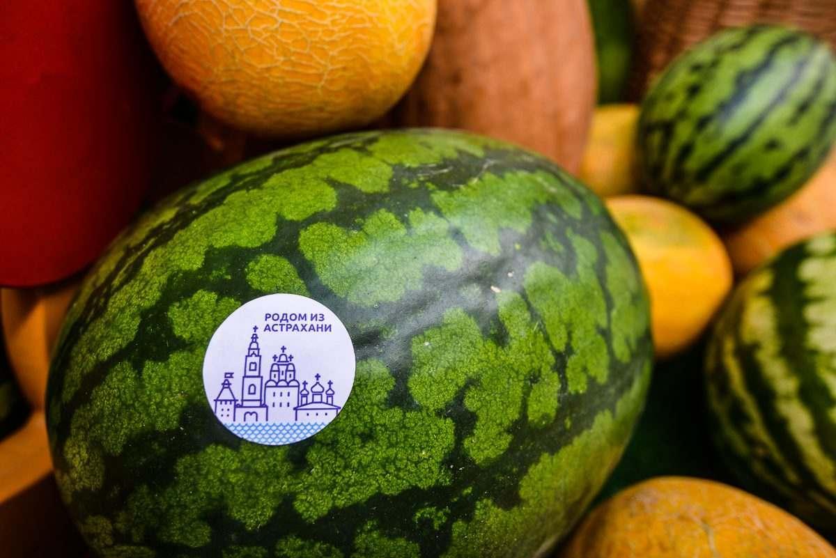 Астраханский арбуз вошел в число самых известных российских брендов