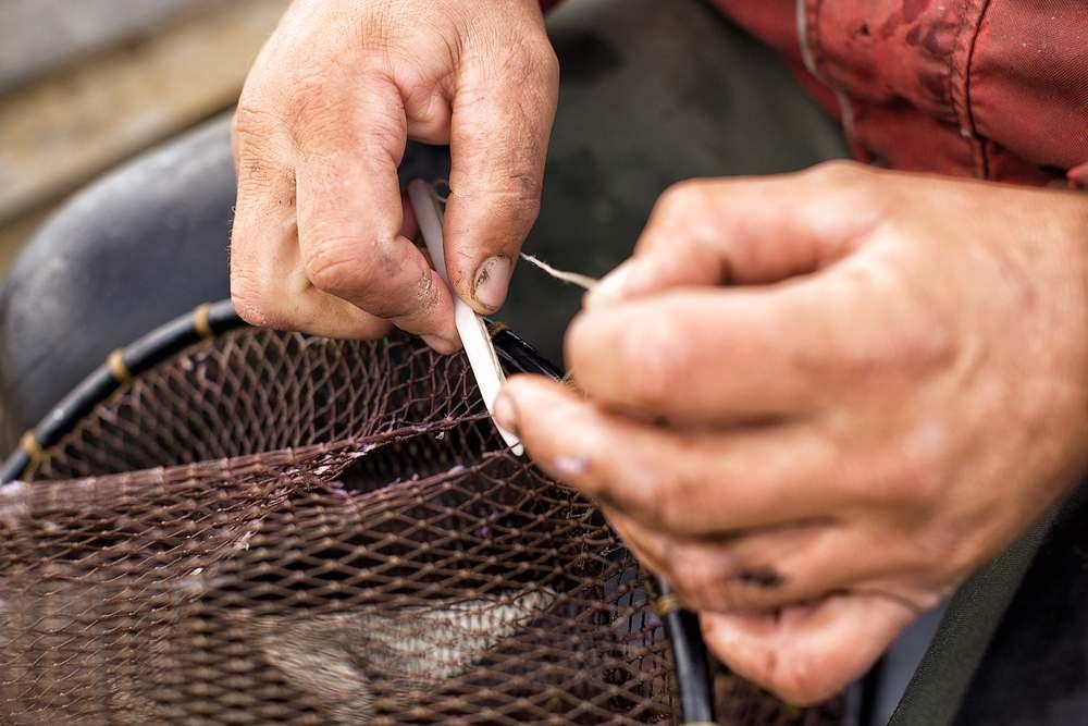Рыба пошла: москвич в астраханской реке наловил 4 килограмма обычным сачком