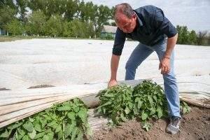 Молодых астраханских фермеров научат быть успешными