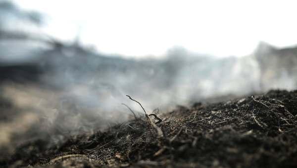 В Астраханской области объявлен самый высокий класс пожарной опасности