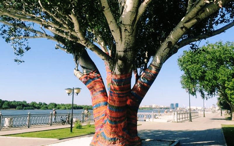 В центре Астрахани деревья оденут в свитеры