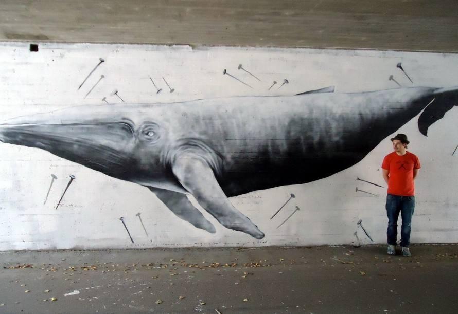 В Астрахань приплыли киты