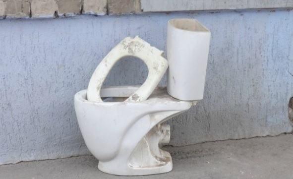 Алена Губанова намерена поднять тему общественных туалетов