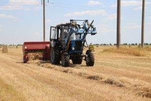 Астраханские фермеры могут остаться без сена