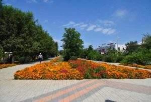 В Астрахани наконец-то начнут поливать деревья и не только