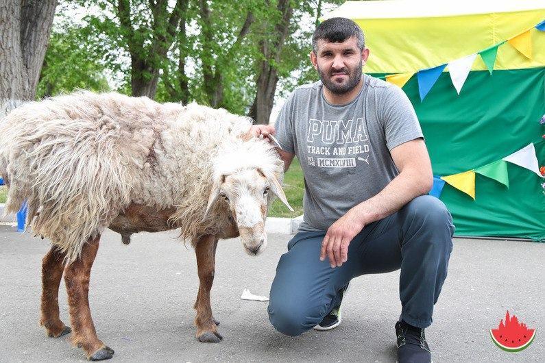 Где в Астрахани забьют животных на Курбан-байрам